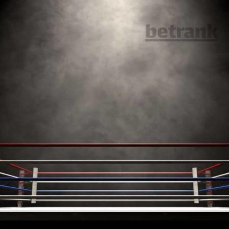 Стратегия ставок на тотал раундов в боксе