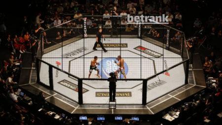 Что такое MMA и UFC: чем отличается UFC от MMA