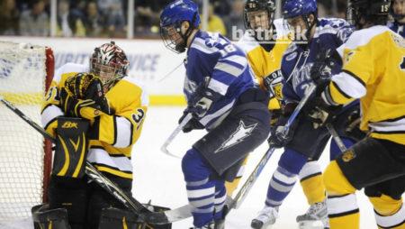 Использование системы в ставках на хоккей